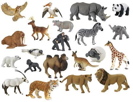 Picture for category Animals